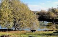 Etang de pêche des cottages de charme du domaine de Louveraude avec piscine, tennis et parc paysagé en Nouvelle Aquitaine